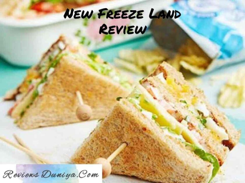 New Freeze Land Review: Tasty food with HIGH COST! New Freeze Land Ahmedabad