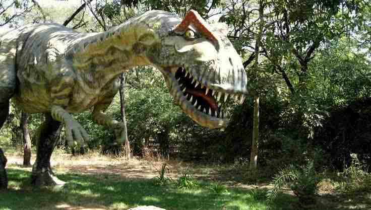 Indroda Natural Park (Gandhinagar): Biggest Park in Gandhinagar – Indroda Natural Park