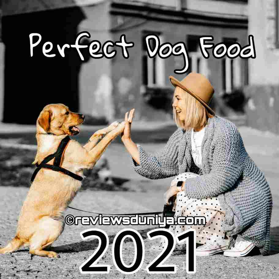 Best Dog Food On Amazon 2021: Cheapest and Healthy Food For Dogs in 2021 - Dog Foods(USA)