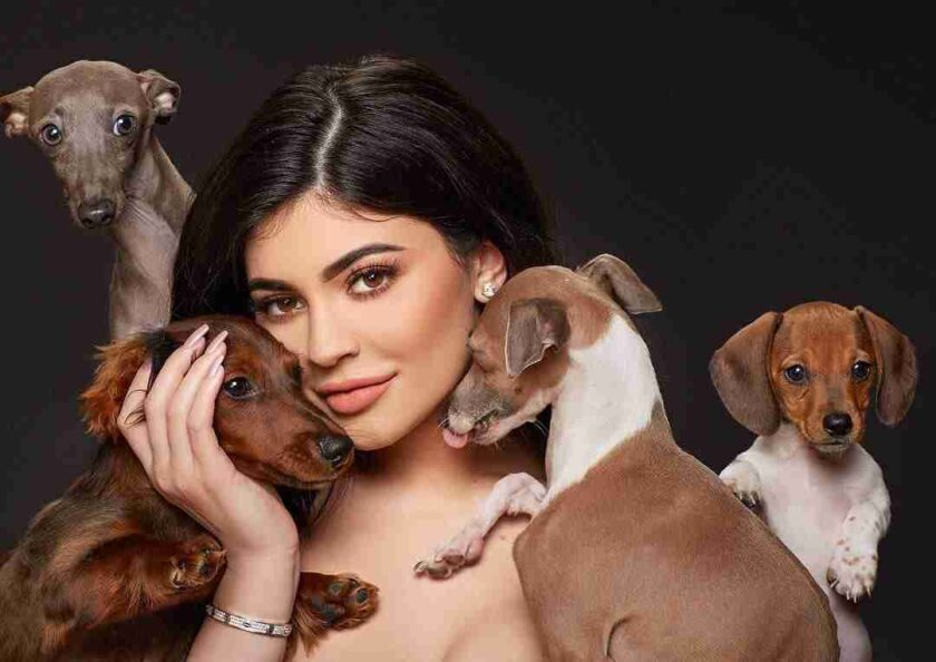 Kylie Jenner's dogs in 2021